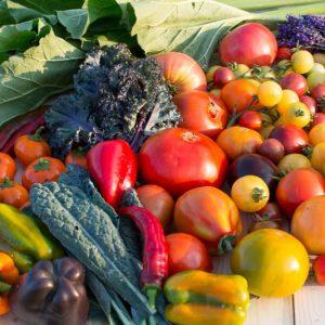 Legume, plante aromatice, fructe