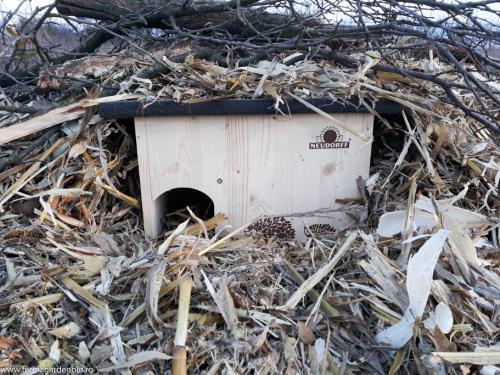 Adapost pentru arici pentru hibernare