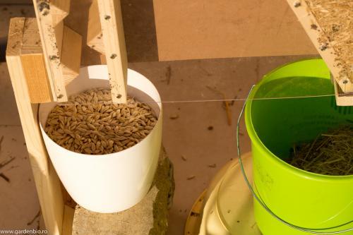 Vanturatoarea este deosebit de eficienta, separa semintele de pleava